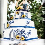 Karnes Stables Rustic Tampa Wedding